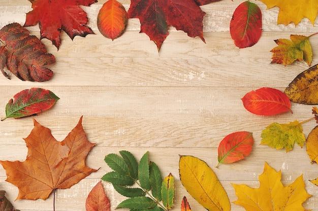 Feuilles colorées d'automne sur un fond en bois - vue de dessus