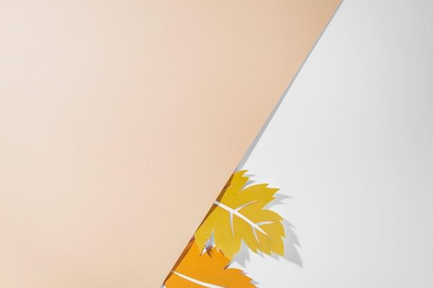 Feuilles colorées sur fond blanc