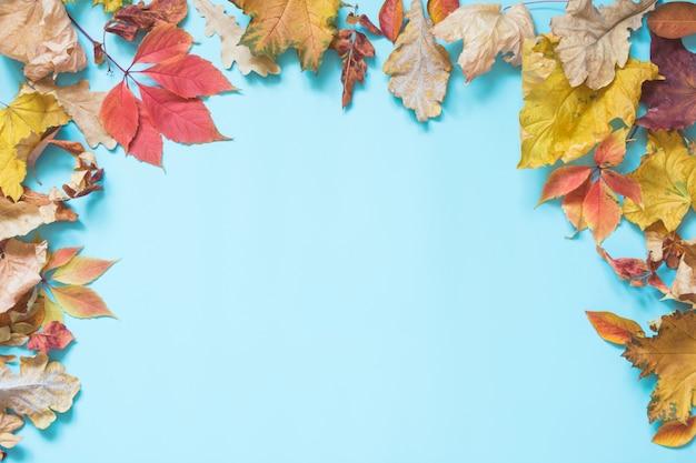 Feuilles colorées tombées et espace copie sur bleu percutant. vue de dessus. cadre d'automne.