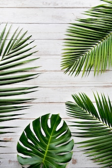 Feuilles décoratives vertes