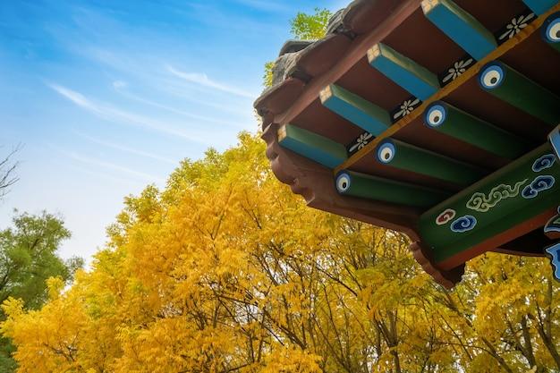 Les feuilles dorées de l'automne et le grenier des bâtiments anciens se trouvent dans le parc