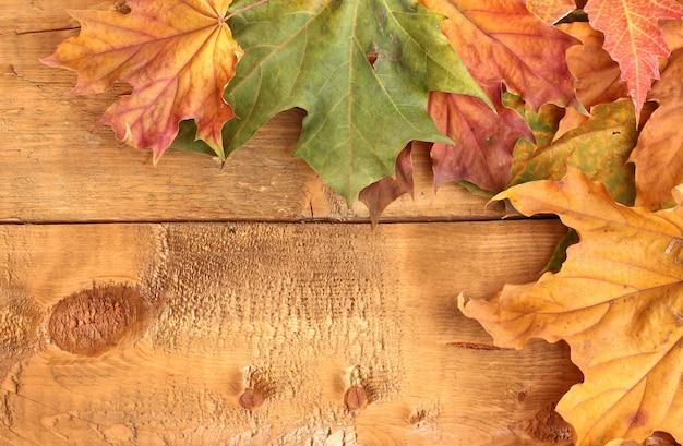 Feuilles d'érable d'automne sèches sur bois