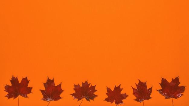 Feuilles d'érable rouge vif sur fond orange. mise à plat.