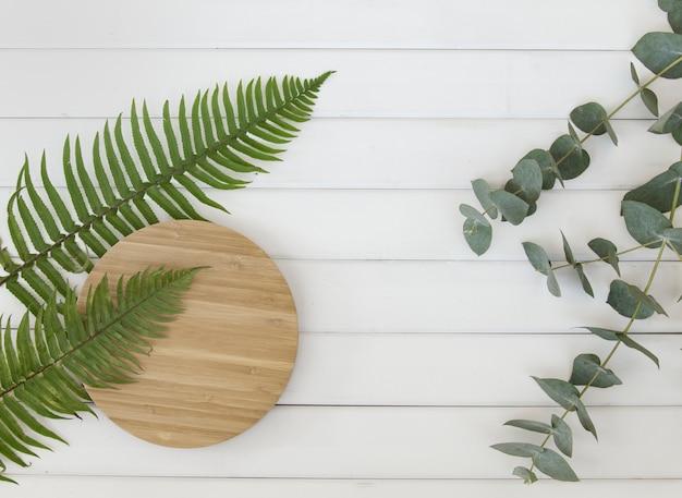 Feuilles de fougère et assiette en bois circulaire sur des panneaux en bois blanc.