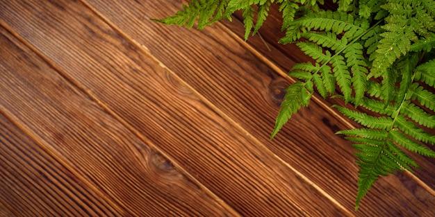 Feuilles de fougère verte sur fond de bois de chêne brun avec espace copie