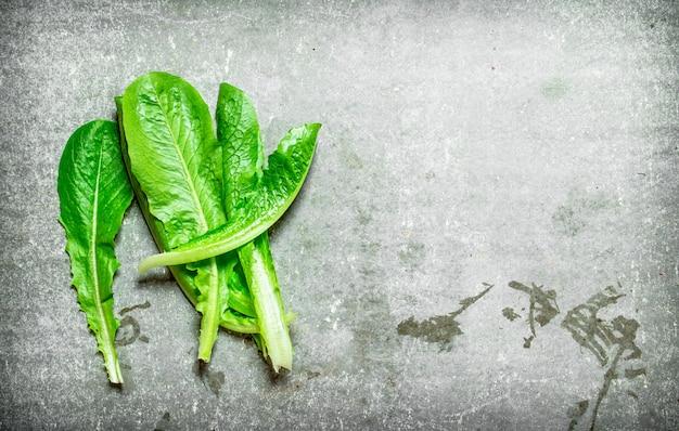 Feuilles fraîches de vert sur la table en pierre