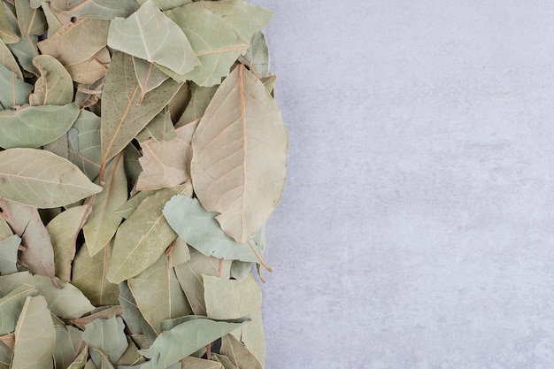 Feuilles de laurier vertes sèches sur fond de béton. photo de haute qualité