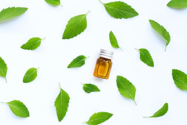 Feuilles de menthe avec bouteille d'huile essentielle