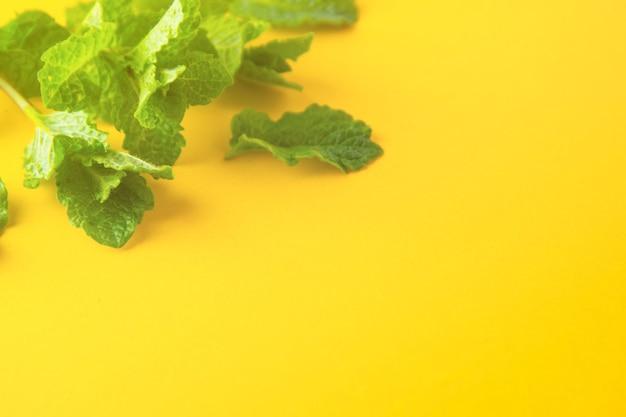 Feuilles de menthe verte sur la vue de dessus de fond jaune. ingrédients cocktails ou boissons d'été.