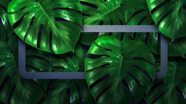 Feuilles de monstera avec cadre de couleur et fond