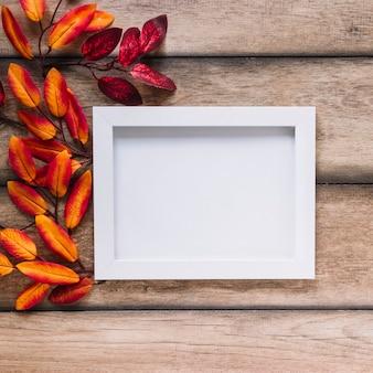 Feuilles multicolores avec cadre blanc