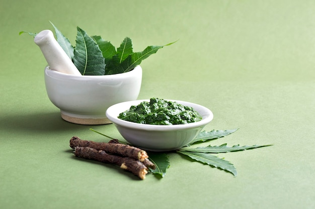 Feuilles de neem médicinales dans un mortier et un pilon avec de la pâte et des brindilles sur une surface verte