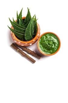 Feuilles de neem médicinales avec pâte et brindilles sur blanc