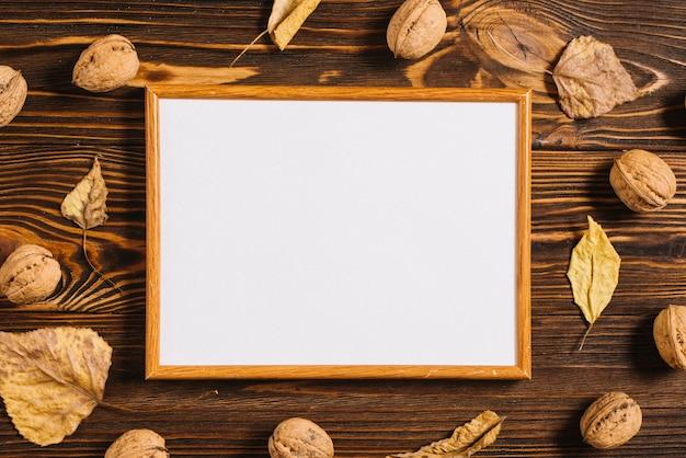 Feuilles et noix près du cadre