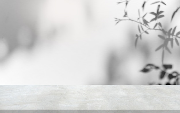 Feuilles d'ombre sur fond de mur blanc et sol bien éditant le produit d'affichage et le texte sur l'espace libre