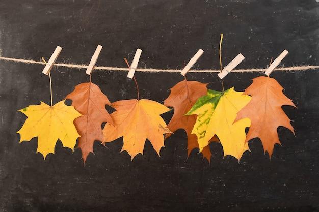 Feuilles d'oranger d'automne sur une corde et des pinces à linge. concept créatif d'automne