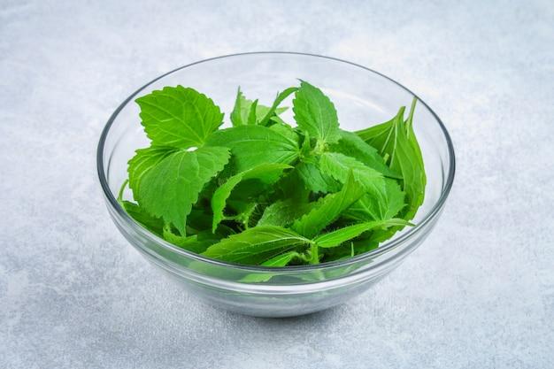 Feuilles d'ortie verte fraîche, salade dans un bol en verre sur une table en béton grise.