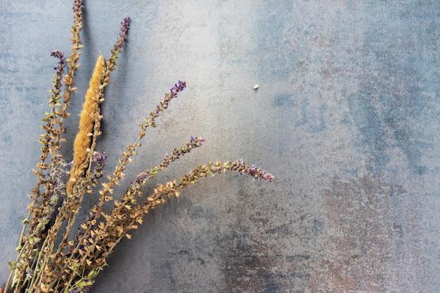 Feuilles de palmier naturelles floues fond d'ombre sur la texture du papier beige. toile de fond abstraite minimaliste des tropiques. affiche