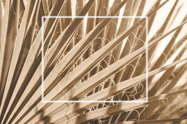 Les feuilles de palmier de la tendance sont de couleur champagne avec cadre blanc pour la conception.