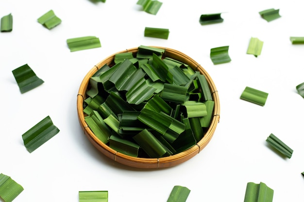 Feuilles de pandan vert frais sur blanc