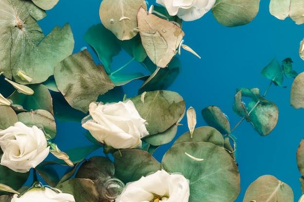 Feuilles et pétales dans l'eau bleue