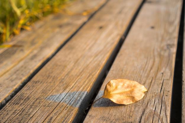 Feuilles sur des planches de bois