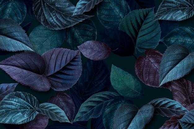 Feuilles de plantes bleuâtres texturées