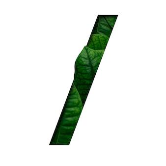 Feuilles de police faites de feuilles vivantes réelles avec une forme de papier précieux.