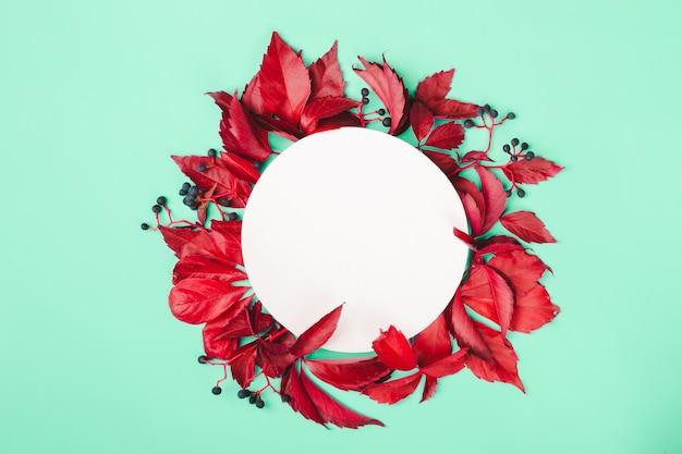 Feuilles rouges et baies bleues sur fond de menthe. concept d'automne nature. cadre rond, espace de copie.