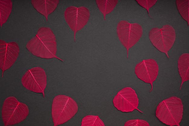 Feuilles rouges fond papier noir