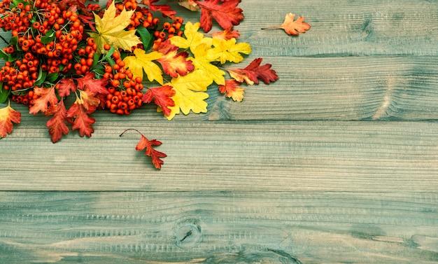 Feuilles rouges et jaunes sur la texture en bois rustique. fond d'automne. photo aux tons vintage