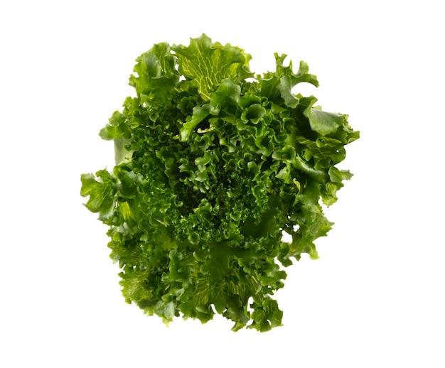 Feuilles de salade laitue bio isolé sur fond blanc.