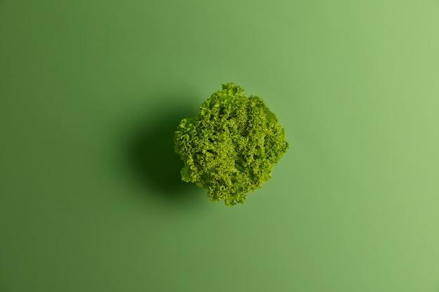 Feuilles de salade de laitue biologique fraîche sur fond vert vif. mise au point sélective, vue de dessus et espace de copie. bonne nutrition diététique saine et concept alimentaire. cuisine végétarienne et légumes