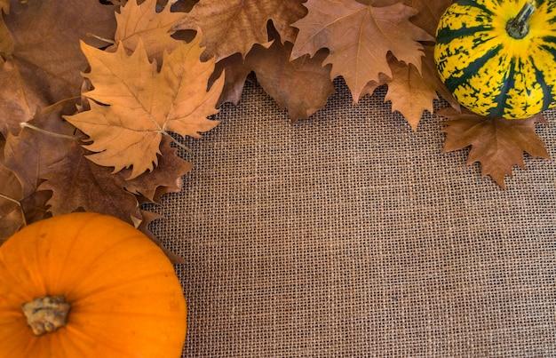 Feuilles sèches d'automne sur la surface du manteau avec des citrouilles