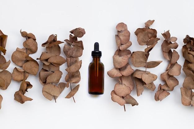 Feuilles sèches d'eucalyptus avec bouteille d'huile essentielle sur fond blanc.