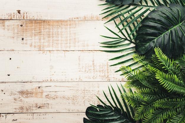 Feuilles tropicales sur fond en bois