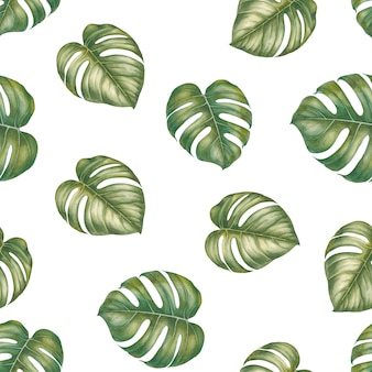 Feuilles tropicales de monstera. modèle sans couture d'illustration aquarelle.