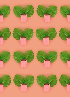 Les feuilles tropicales de palm monstera reposent dans des seaux pastels colorés. modèle minimaliste tendance à poser à plat. vue de dessus