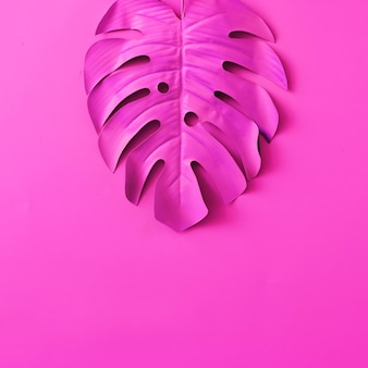 Feuilles tropicales et de palmier de couleur néon rose vif. art conceptuel. fond de surréalisme minimal.