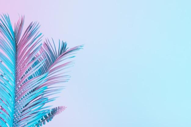 Feuilles tropicales et de palmier dans des couleurs holographiques dégradées audacieuses et vibrantes. art conceptuel. surréalisme minimal.