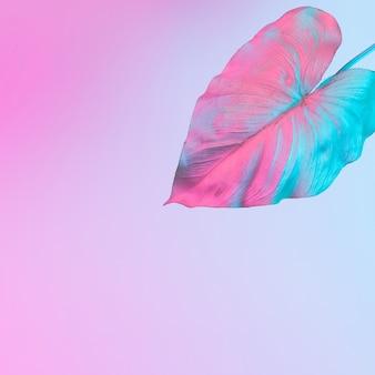 Feuilles tropicales et de palmier dans des couleurs néon holographiques dégradées audacieuses. art conceptuel. fond de surréalisme minimal.