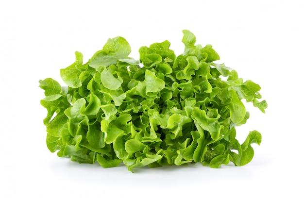 Feuilles végétales de laitue isolées