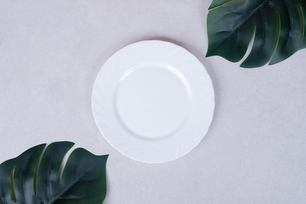 Feuilles vertes artificielles et plaque blanche sur surface blanche.