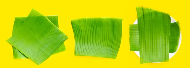 Feuilles vertes de banane sur fond jaune.