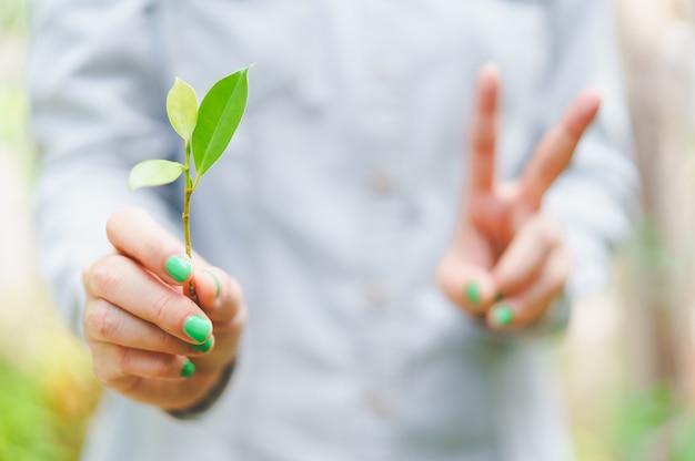 Feuilles vertes bâton tenant par la femme avec le signe de la main victorieux vernis à ongles vert brillant
