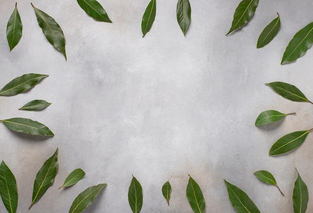 Feuilles vertes cadre place pour le texte sur la surface grise