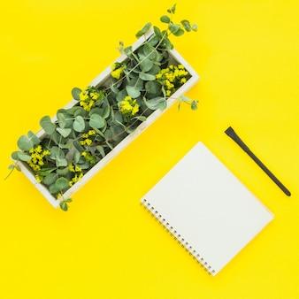 Feuilles vertes dans une boîte rectangulaire; bloc-notes en spirale et stylo sur fond jaune