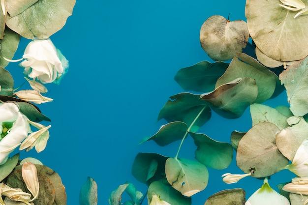 Feuilles vertes dans l'eau avec espace de copie