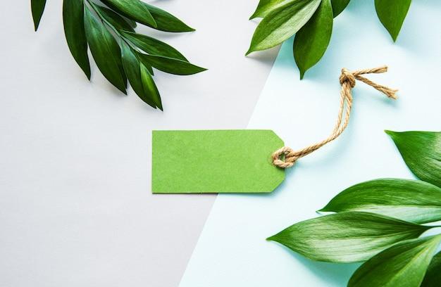 Feuilles vertes et étiquette sur fond pastel