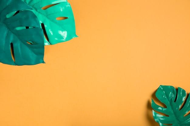 Feuilles vertes sur fond orange avec espace de copie